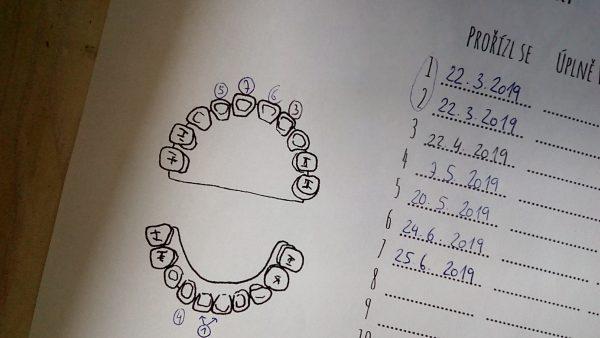 ukázka toho, jak zapisujeme rostoucí zoubky my