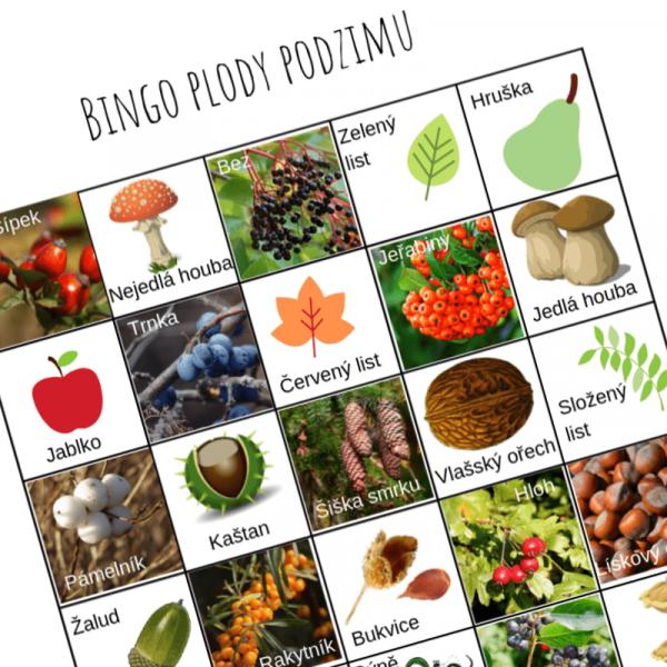 Ukázka zábavné hry Bingo plody podzimu