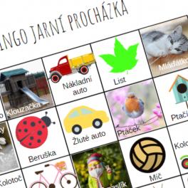 Ukázka hry bingo jarní procházka