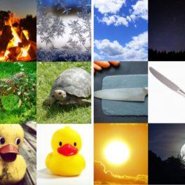 Opaky - přiřazování opačných obrázků