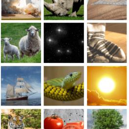 anglická abeceda, přiřazování slov - obrázky