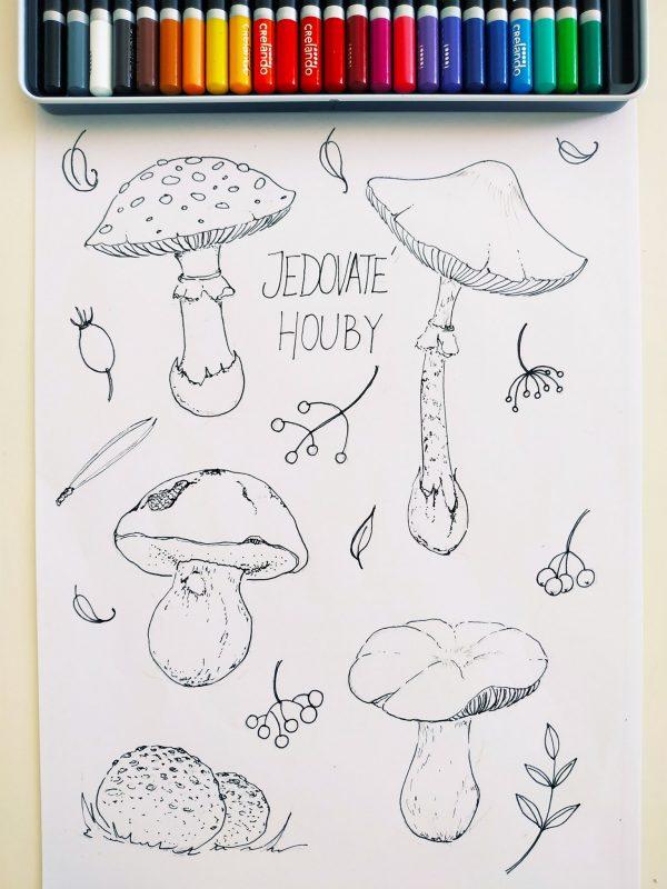 omalovánky s houbami