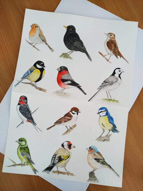 Naši ptáčci - nádherně ručně malovaní