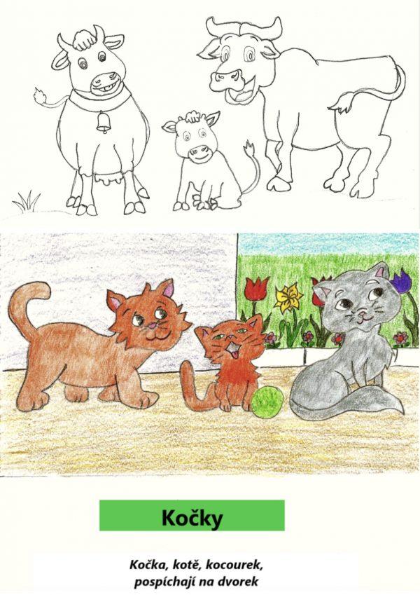 báseň, zvíře, zvířata, kočka, kráva, býk, tele, farma, domácí, kocour, kotě, omalovánky
