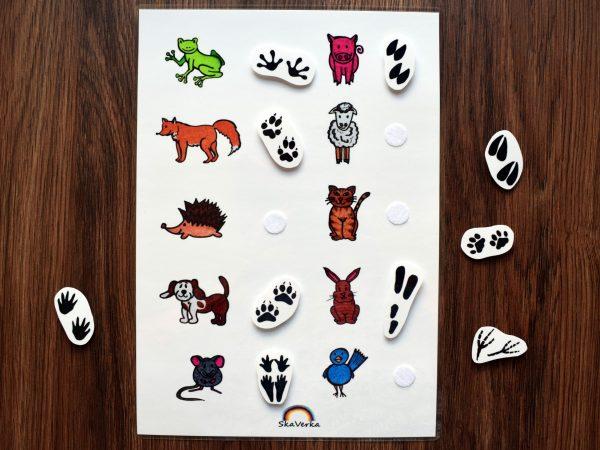 Stopy, zvířat, zvíře, zvířata